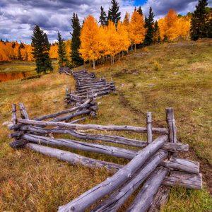 Fall Foliage Fence