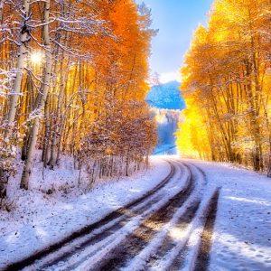 Drive through the Seasons