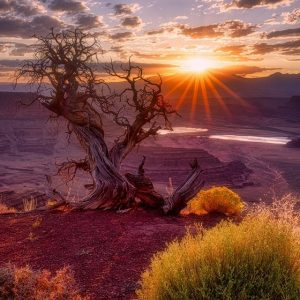 Dead Horse Point State Park Sunrise