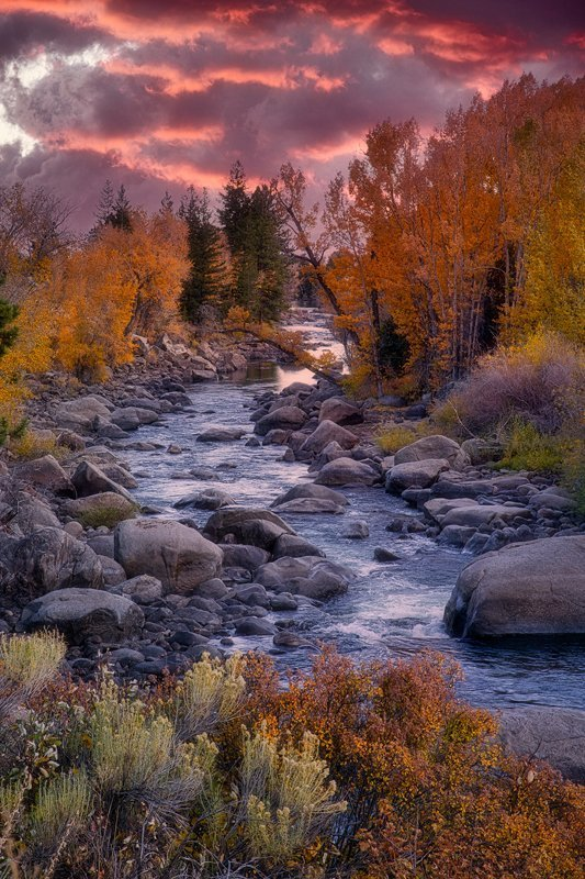 Arkansas River Fall Foliage