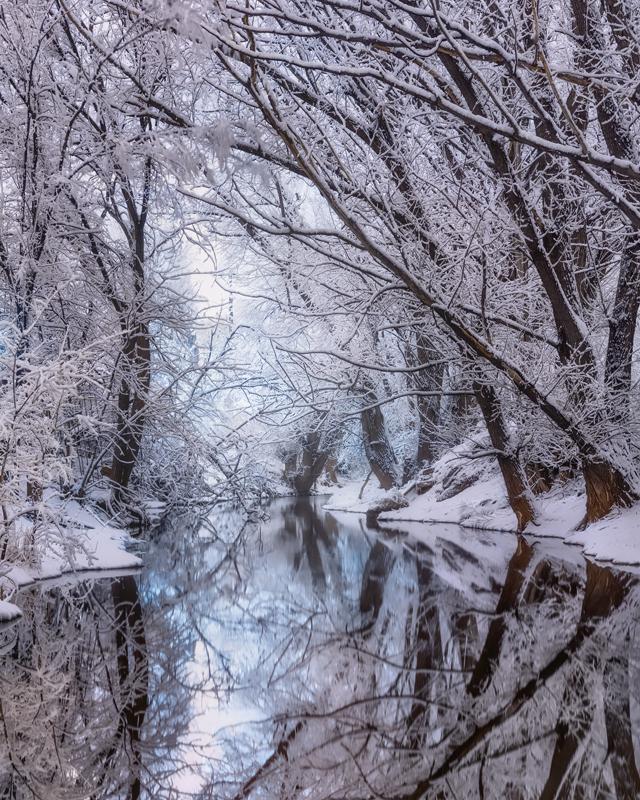 Fountain Creek Winter