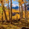 Capitol Creek Road Fall Foliage
