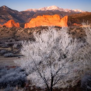 Hoarfrost at Garden of the Gods